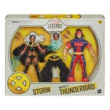 MARVEL LEGENDS: STORM & MARVEL'S THUNDERBIRD 2-FIGURE PACK