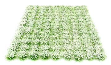 6mm White flowers