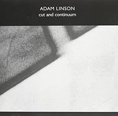 Adam Linson - Cut And Continuum (2006)