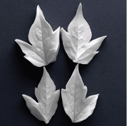 Clematis Montana Medium Leaves Veiner Set Of 2 Botanically Correct Products By Robert Haynes