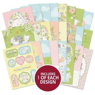 24 sheets from The Little Book of Kittens A6 Hunkydory Card Toppers