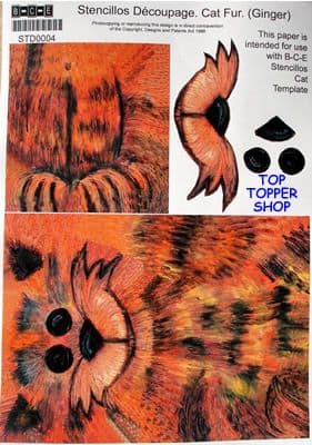 STENCILLO CAT TEMPLATE PAPER, GINGER FUR by BCE