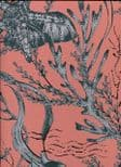 Hidden Treasures Seahorse Wallpaper 70033 By Hooked On Walls For Today Interiors