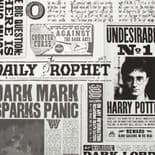 Individual Daily Prophet Harry Potter Wallpaper 108700 By Graham & Brown