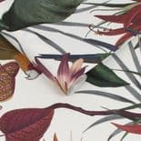 Paradise Parrot White Wallpaper 108601 By Superfresco Easy Graham & Brown