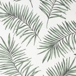 Paradise Scandi Green Wallpaper 106997 By Superfresco Easy Graham & Brown