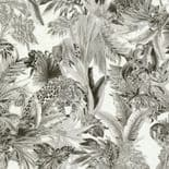 Roberto Cavalli Home No.7 Wallpaper RC18006 By Emiliana Parati For Colemans
