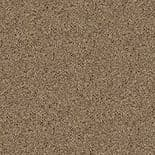 Surface Wallpaper 1600-2 By Today Interiors