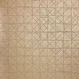 Xplosion Wallpaper 591-3 By AV Design Studio For Today Interiors