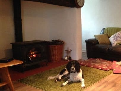 Blanketts Dog Friendly Cottage Williton, Somerset