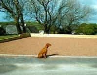 Golden Sands Holiday Park Caravans Dawlish Devon - Pets Welcome