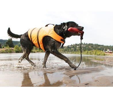 Holiday Dog Life jackets  Safety Buoyancy Aid Jacket