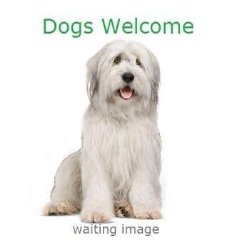 The Ickworth Dog Friendly Hotel Suffolk