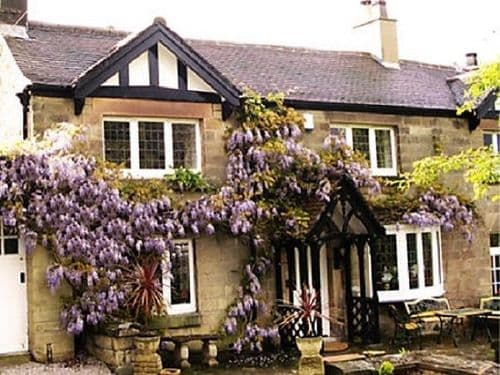 The Pines dog-friendly B and B Matlock Derbyshire
