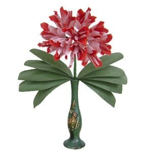 Chinese Red Carnation Chiant, (DD048)