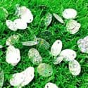 Sequins, Silver colour, 9mm x 13mm, 145 pieces, 5g, Oval, Sequins are shiny, [CZP632]