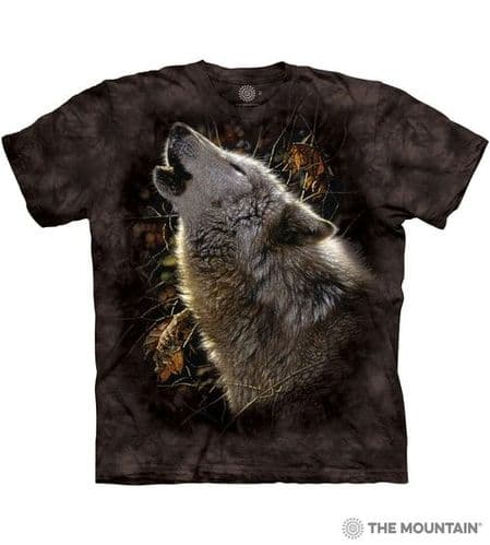 Song of Autumn T-shirt   The Mountain®